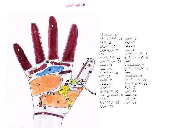3ilaj رفلكسولوجي اليدين Human Development Book Worth Reading Peace Gesture