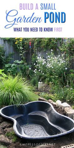 Bon Best Tips For Starting A Small Garden Pond | WATER  FEATURES...PONDS,FOUNTAINS,FISH | Pinterest | Garden Ponds, Water Plants  And Pond