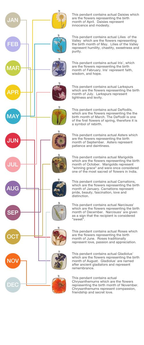 Whats Your Sign Birth Month Signs Symbols Pinterest Birth