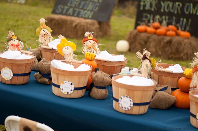 Fall Harvest Party - Pumpkin Patch