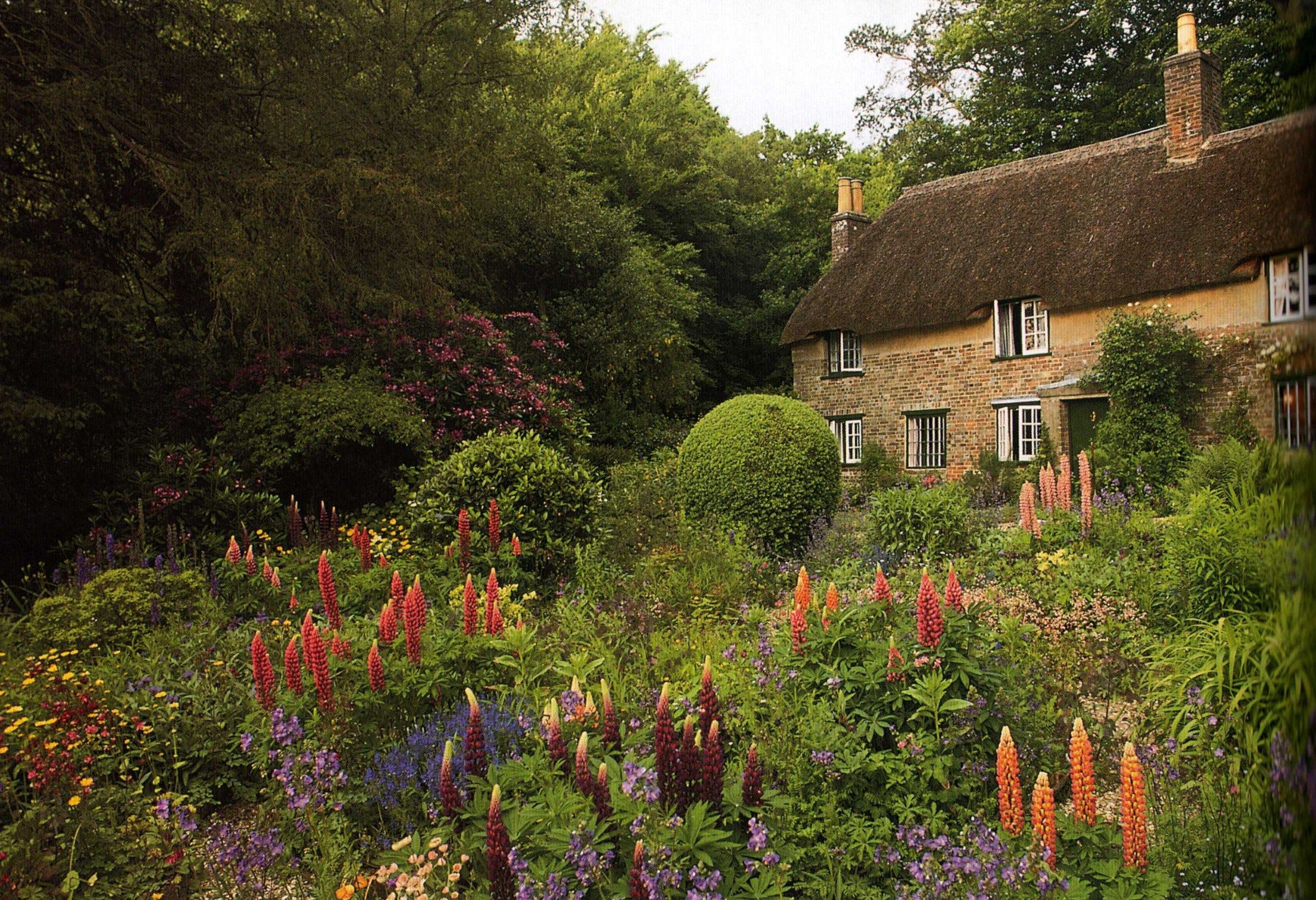Dorset: Thatched cottage, childhood home of novelist Thomas Hardy at ...