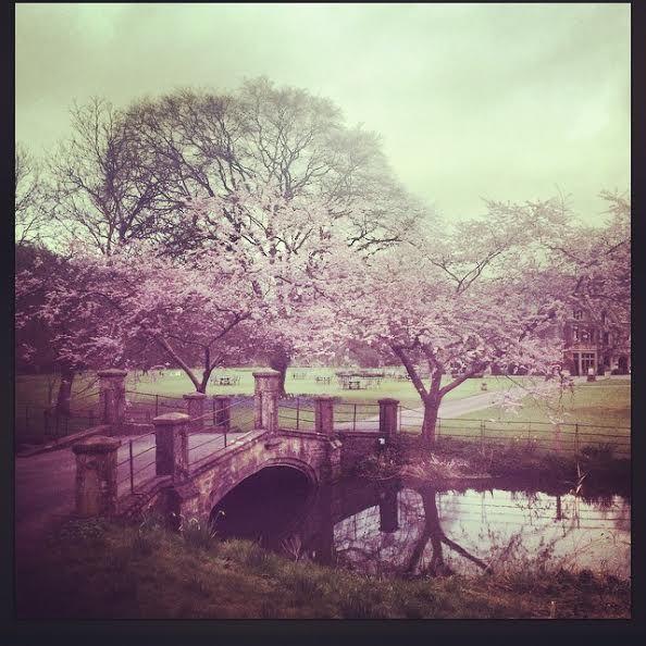 Manor House Hotel - Moreton-in-Marsh, Gloucestershire  #spring #weddingvenues #guidesforbrides
