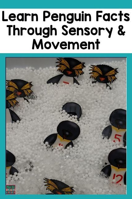 Put research into action by combining science, sensory and movement! Your students will be focused and engaged in learning with these penguin activities. These ideas are ideal for special education classrooms, autism programs, preschool, kindergarten, first grade and hands on learners. #sensory