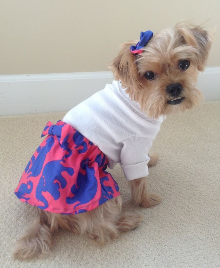 Pin By Kalena Dorgan On Critters Preppy Girl Preppy Lilly Pulitzer