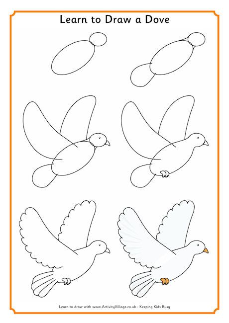 Learn to draw a dove … | Noah | P…