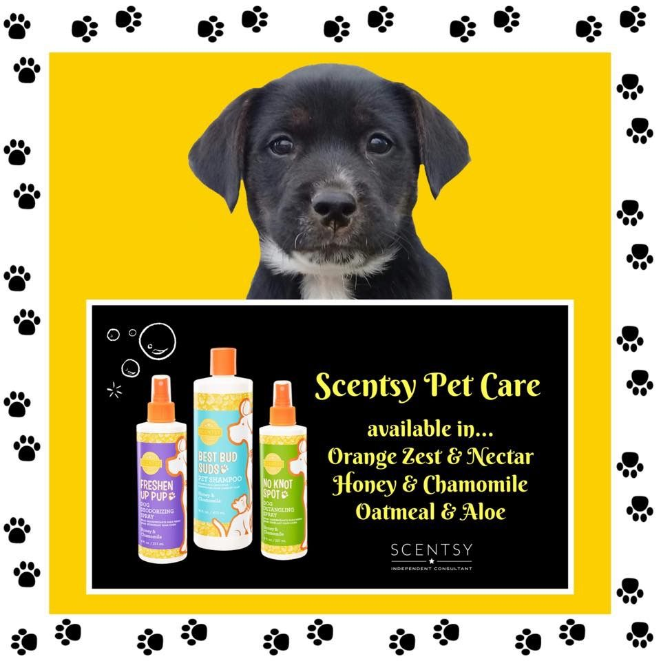 All Scentsy Pets products are available in three mild, pet