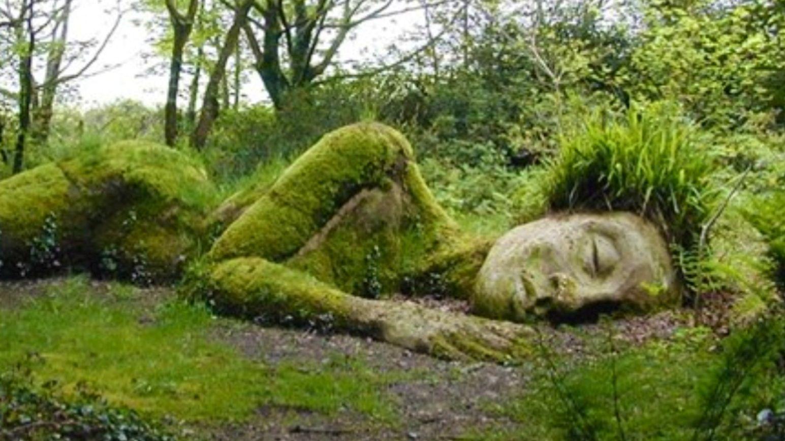 Au bout de l'allée | Lost gardens of heligan, Lost garden ...