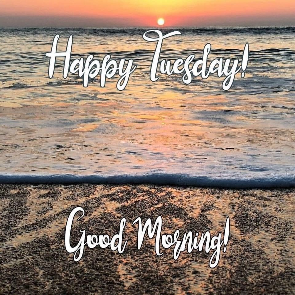 Pin By Mari R On Monday Through Friday In 2021 Happy Tuesday Meme Good Morning World Beach Quotes