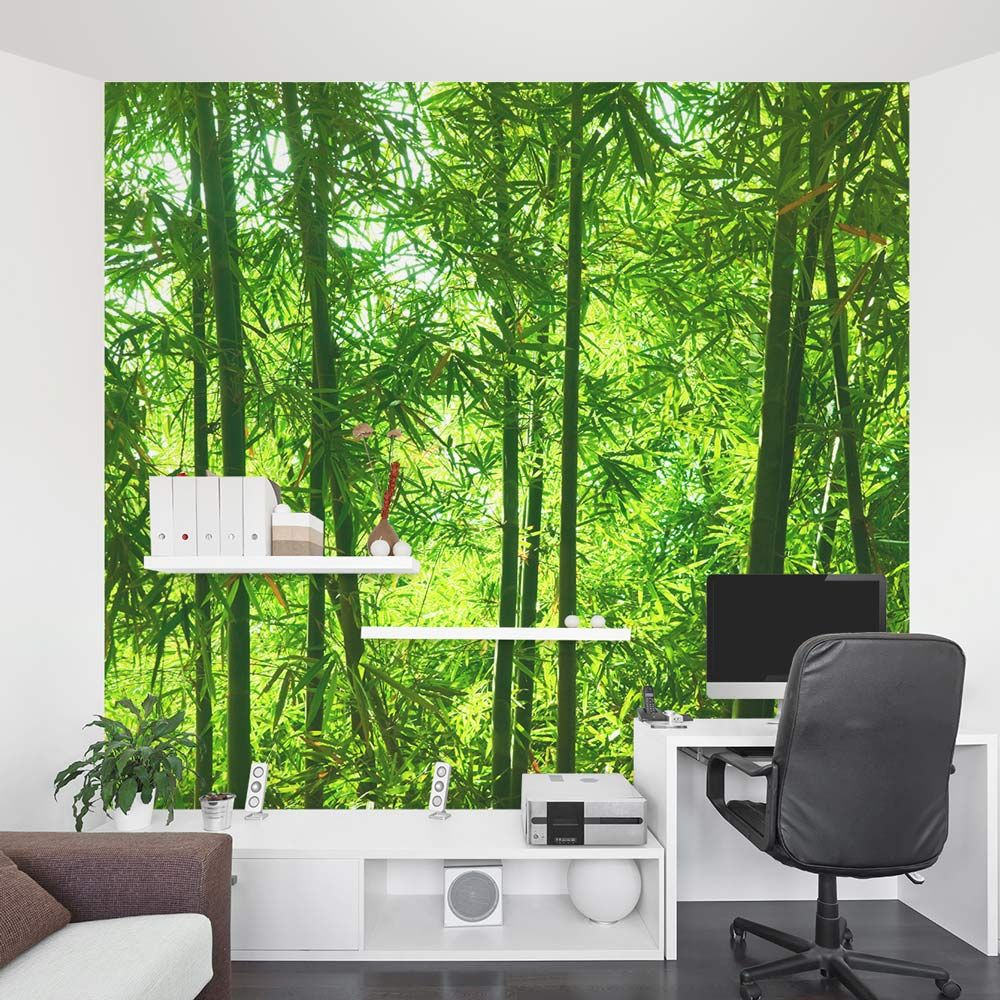 wallpaper for office walls. Bamboo Wall Mural | Forest Wallpaper For Office Walls