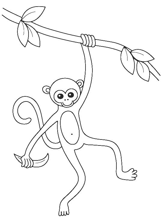 monkey swinging on a tree branch coloring pages | kids coloring ... - Coloring Pages Monkeys Trees