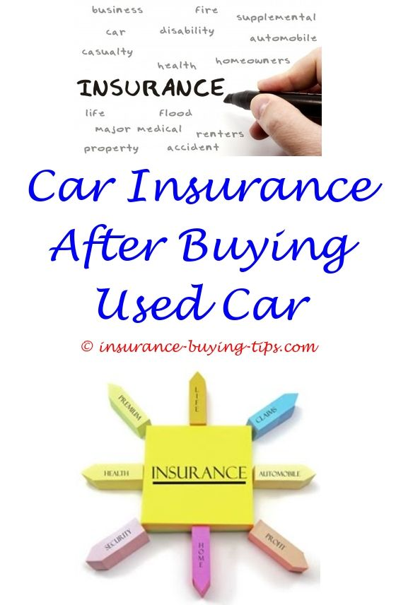 Nationwide Insurance Quote Best Car Insurance Quotes Uk  Buy Health Insurance And Guns