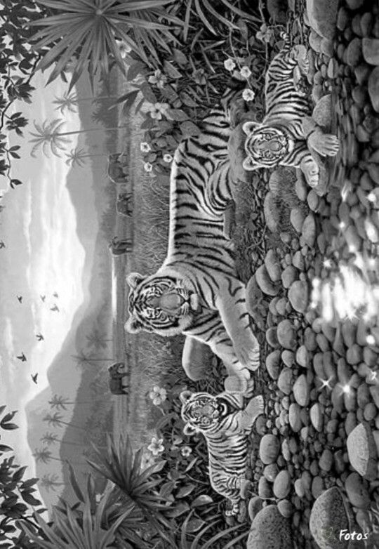 tiger cubs wildlife abstract doodle zentangle paisley