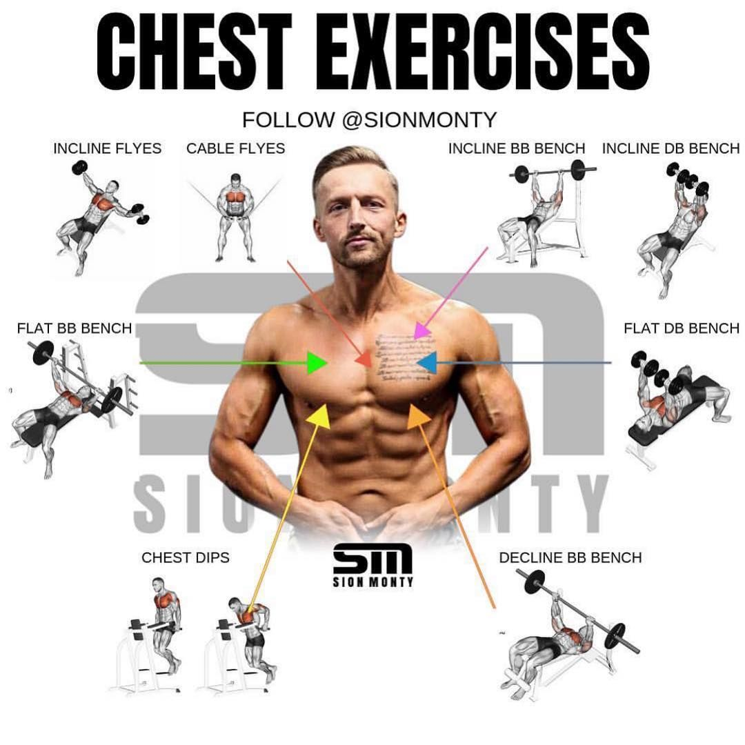 10 Best Chest Exercises For Building Muscle - GymGuider.com Best chest workout Chest workouts