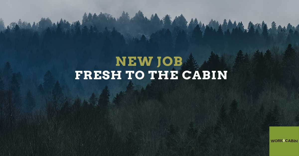 Lots of cool environmental and field positions!! New job
