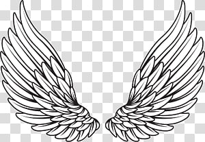 Pair Of White Wings Illustration Drawing Wings Angel Transparent Background Png Clipart Angel Wings Drawing Wings Drawing Angel Wings Illustration