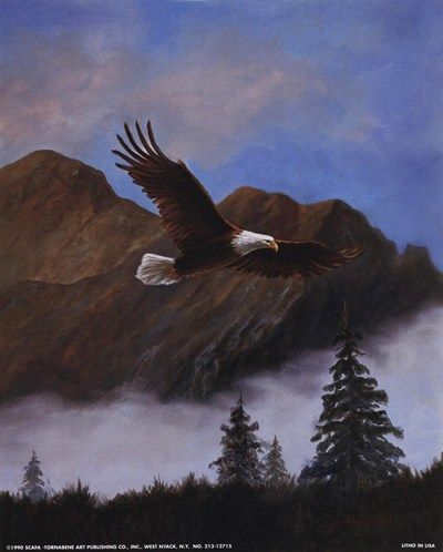 Caroselli Art eagle | Animals > Birds > Eagles : Art Prints, Posters & Framed Prints for ...