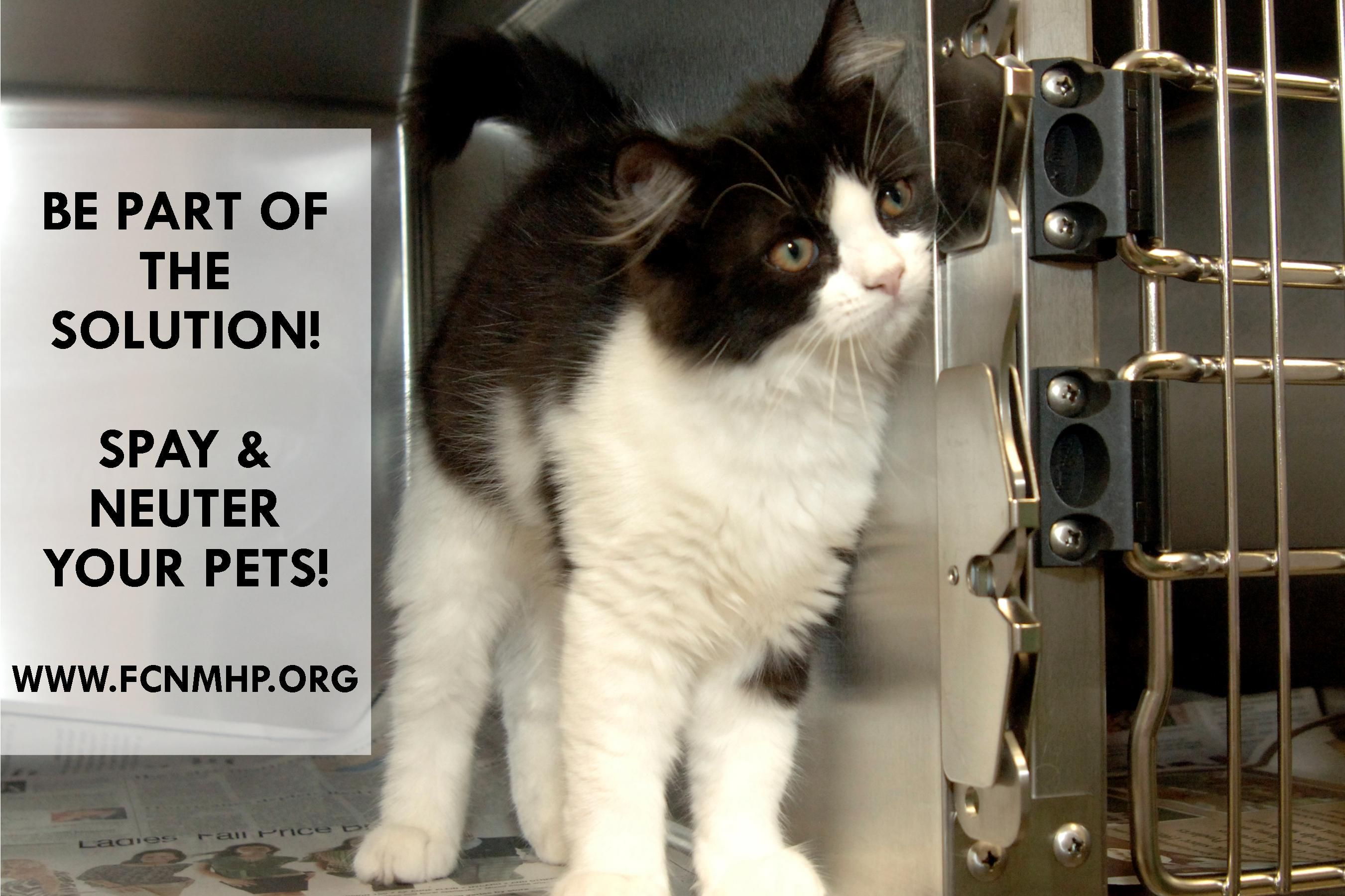 Be Part Of The Solution Spay Neuter Www Fcnmhp Org Neuter Animals Your Pet