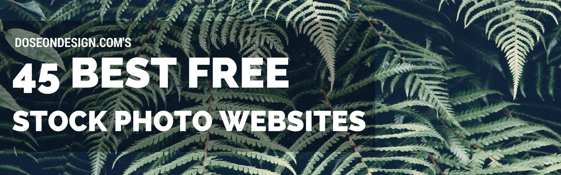 45 Sites for Free Images for Commercial Use Without