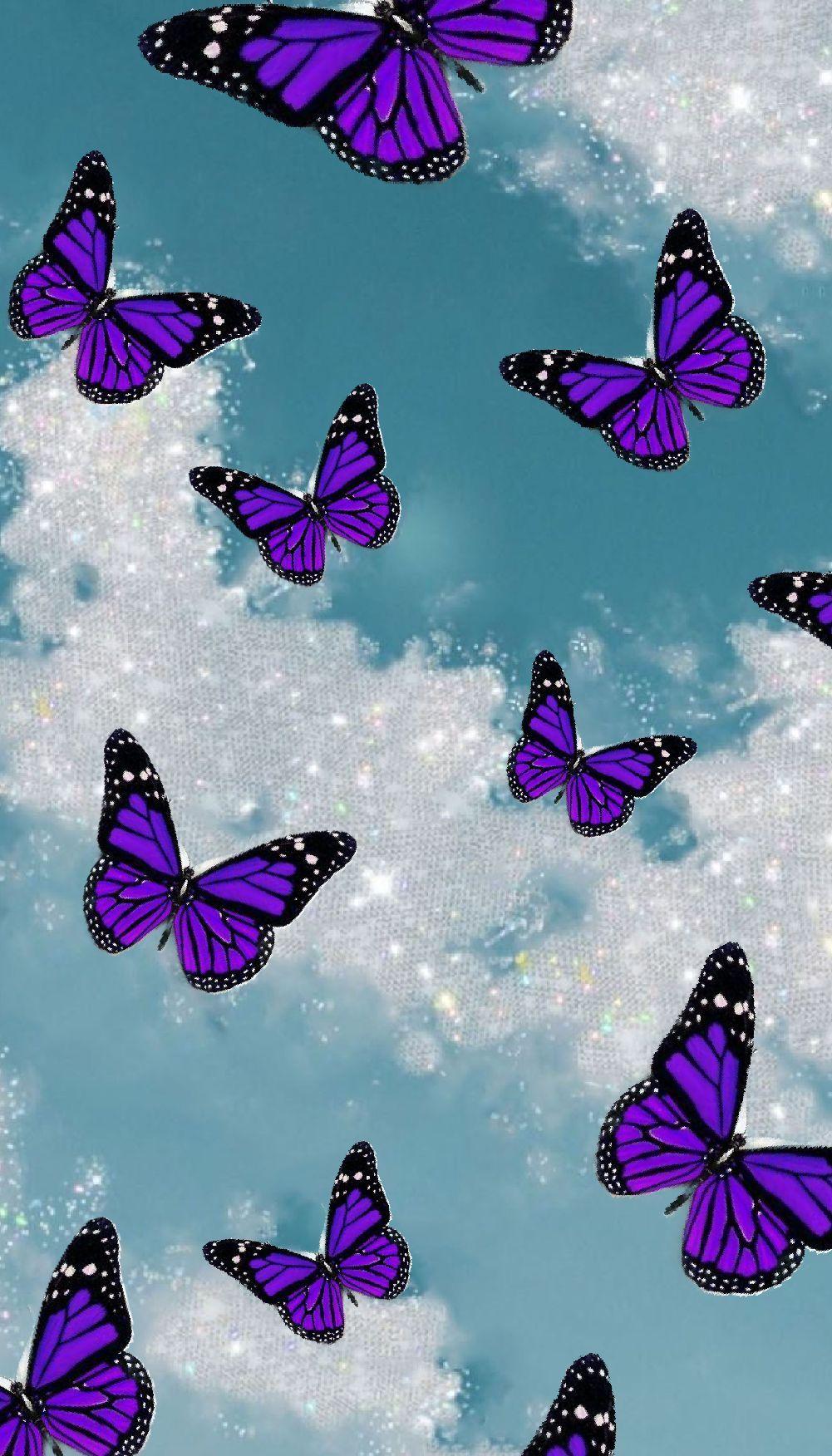 Purple Butterflies Blue Sky Butterfly Wallpaper Iphone Purple Butterfly Wallpaper Butterfly Wallpaper