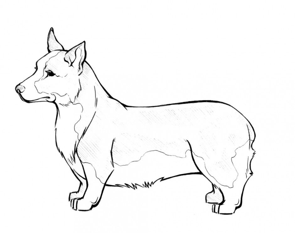 Beagle coloring pages to download and print for free | Dog ...