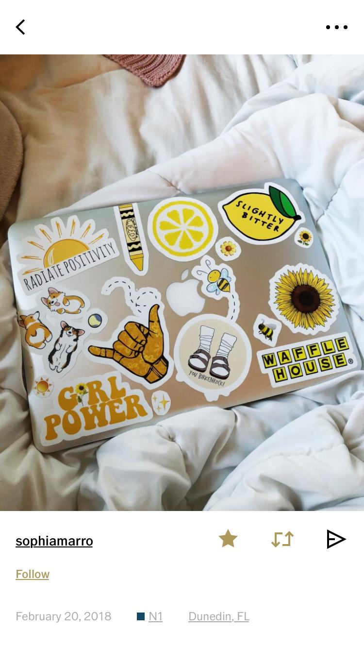 Laptop stickers alexander mcqueen scarf artsy cute sticker ideas laptop cases