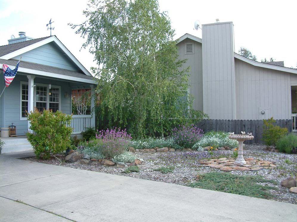 California Xeriscape For Small Yards | Xeriscape Front YardBIRD BATH AND ROCK ADD SMALL PLANTS ...