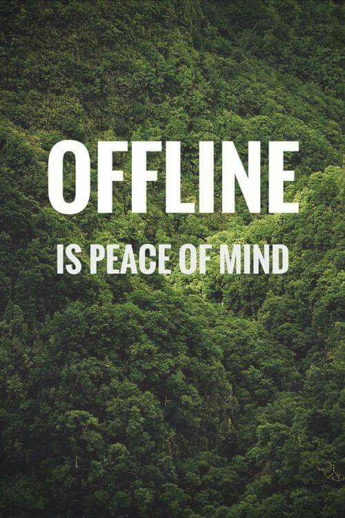 Offline Is Peace Of Mind So True Pinterest Quotes Social