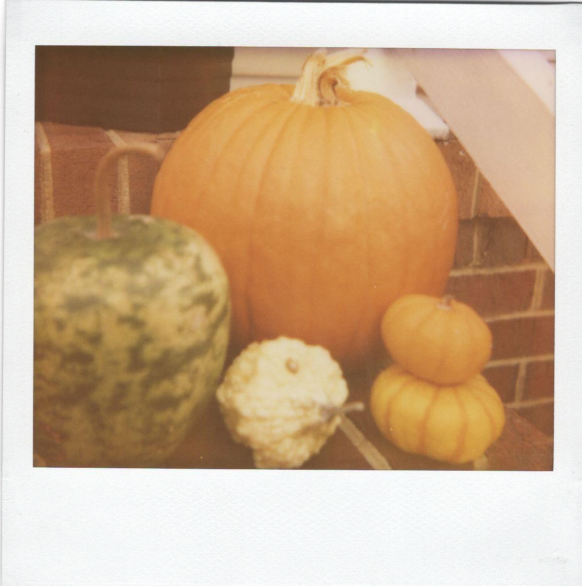 Pumpkins. {Polaroid Spectra - by Amy Sandoval Photography}