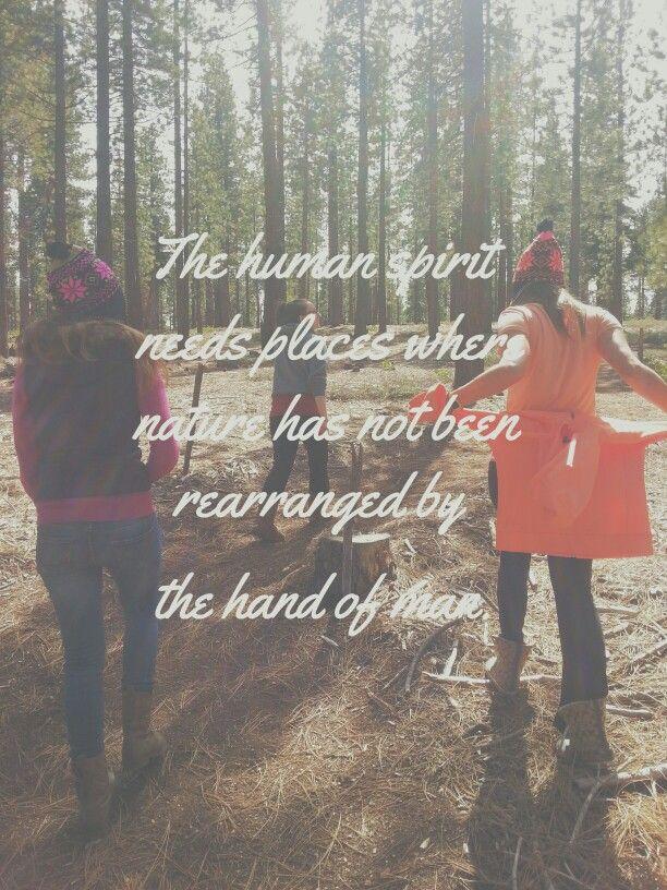 El espíritu humano necesita lugares donde la naturaleza no ha sido modificada por la mano del hombre. #nature #gaia #conscious #awareness #earth #vsco #vscocam #woods #laketahoe