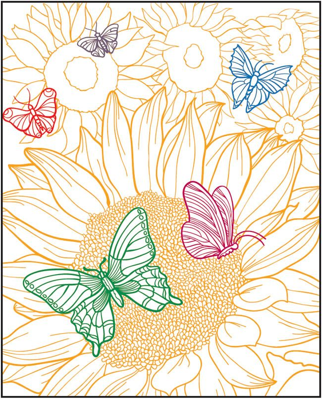 Welcome To Dover Publications Creative Haven Beautiful Butterflies Designs With A Splash Of Color