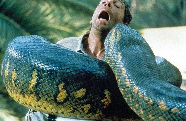 Ular terbesar di dunia unik pinterest ular terbesar di dunia reheart Images