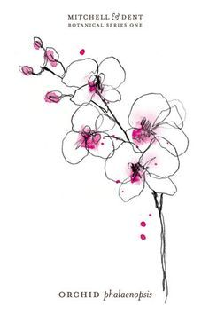 Orchid tattoo designs small - Google Search … Orchid