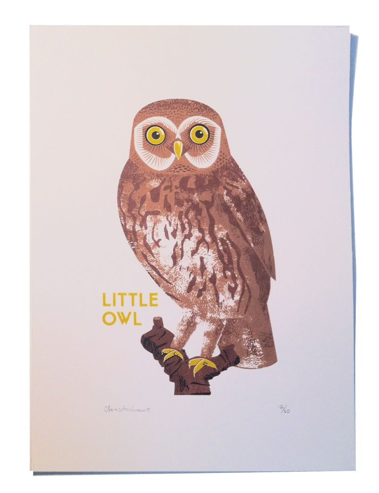 Print Club London | shop | little_owl | Little owl, Owl ...