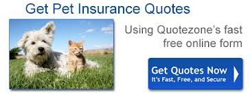 Pin By What Is Bathroom Vanity On Pet Insurance Quotes Pet