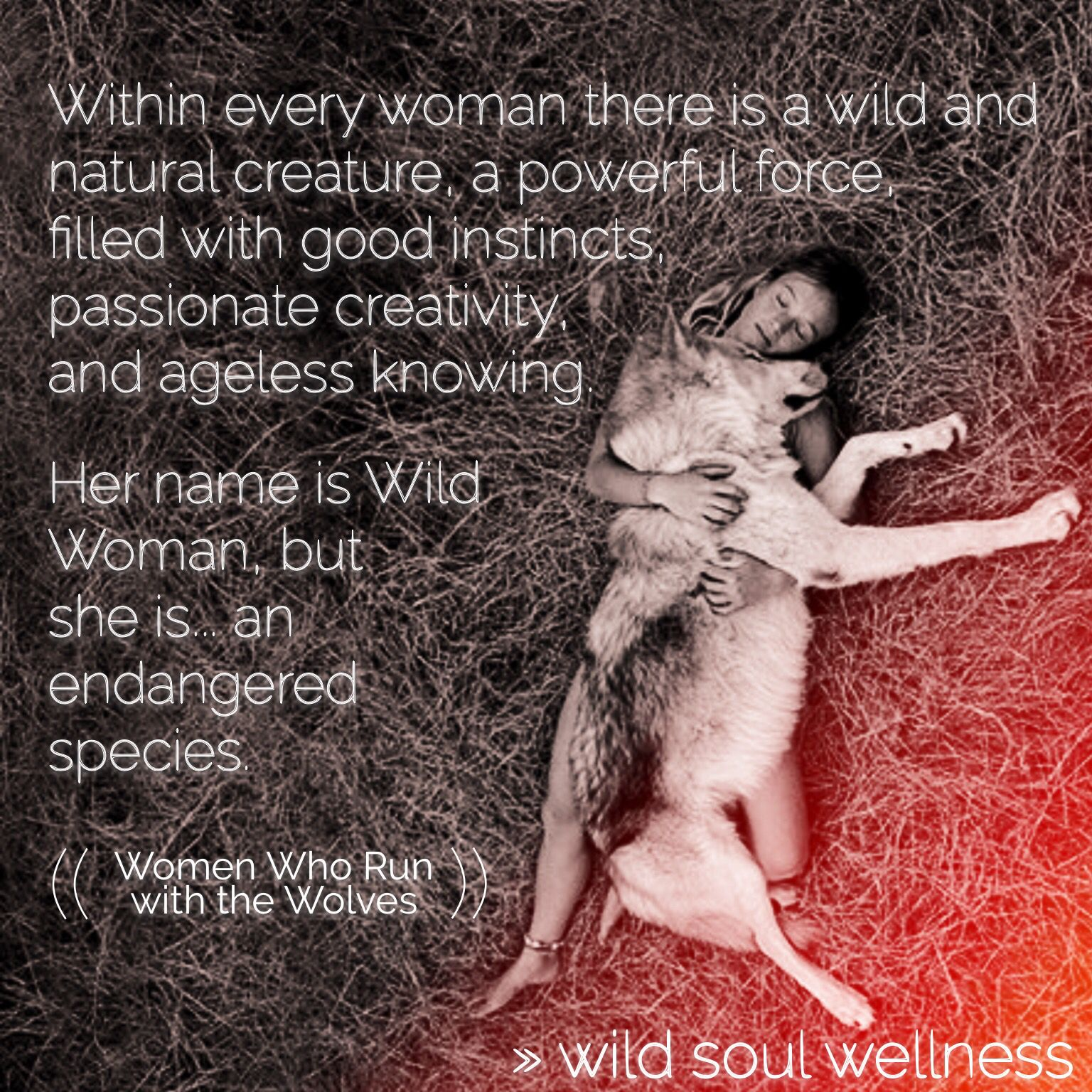 Women Who Run With The Wolves Quotes: Women Who Run With The Wolves By Clarissa Pinkola Estes