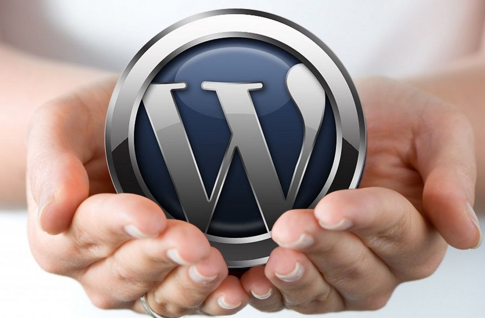 MicroHost providing word-press web hosting with one click in
