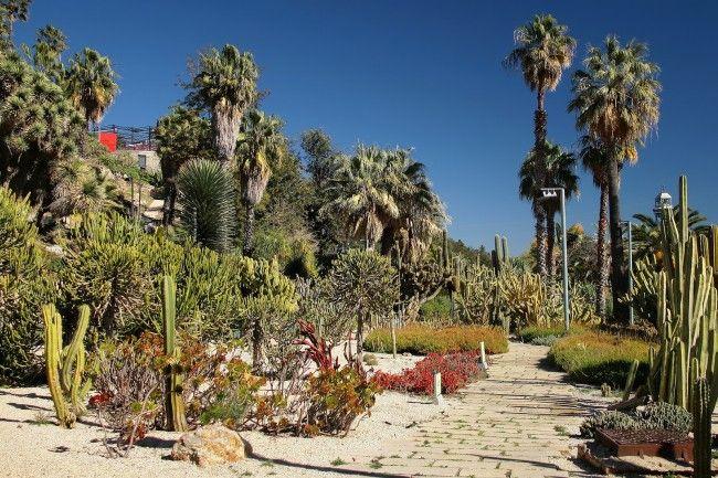 6cc01b55556749347a3d5935a77d1b3e - Mossen Costa I Llobera Gardens Ticket