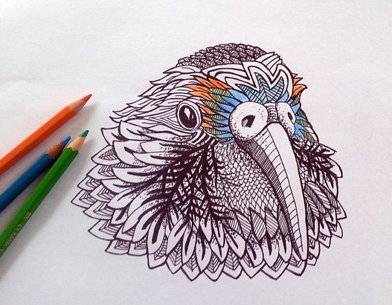 960 Kea Coloring Book Online Free Images
