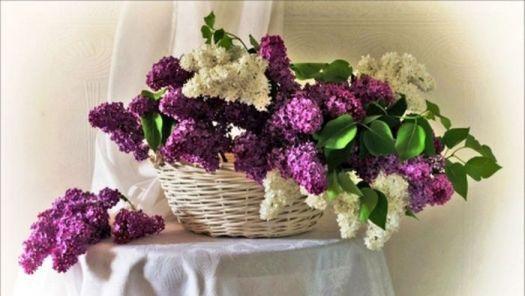 jarní květinová dekorace...Spring floral decorations ... (66 pieces)
