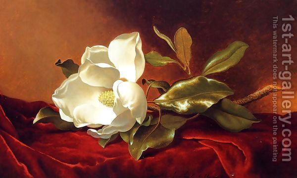 A Magnolia On Red Velvet Painting By Martin Johnson Heade Reproduction 1st Art Gallery Martin Johnson Heade Flower Painting Velvet Painting