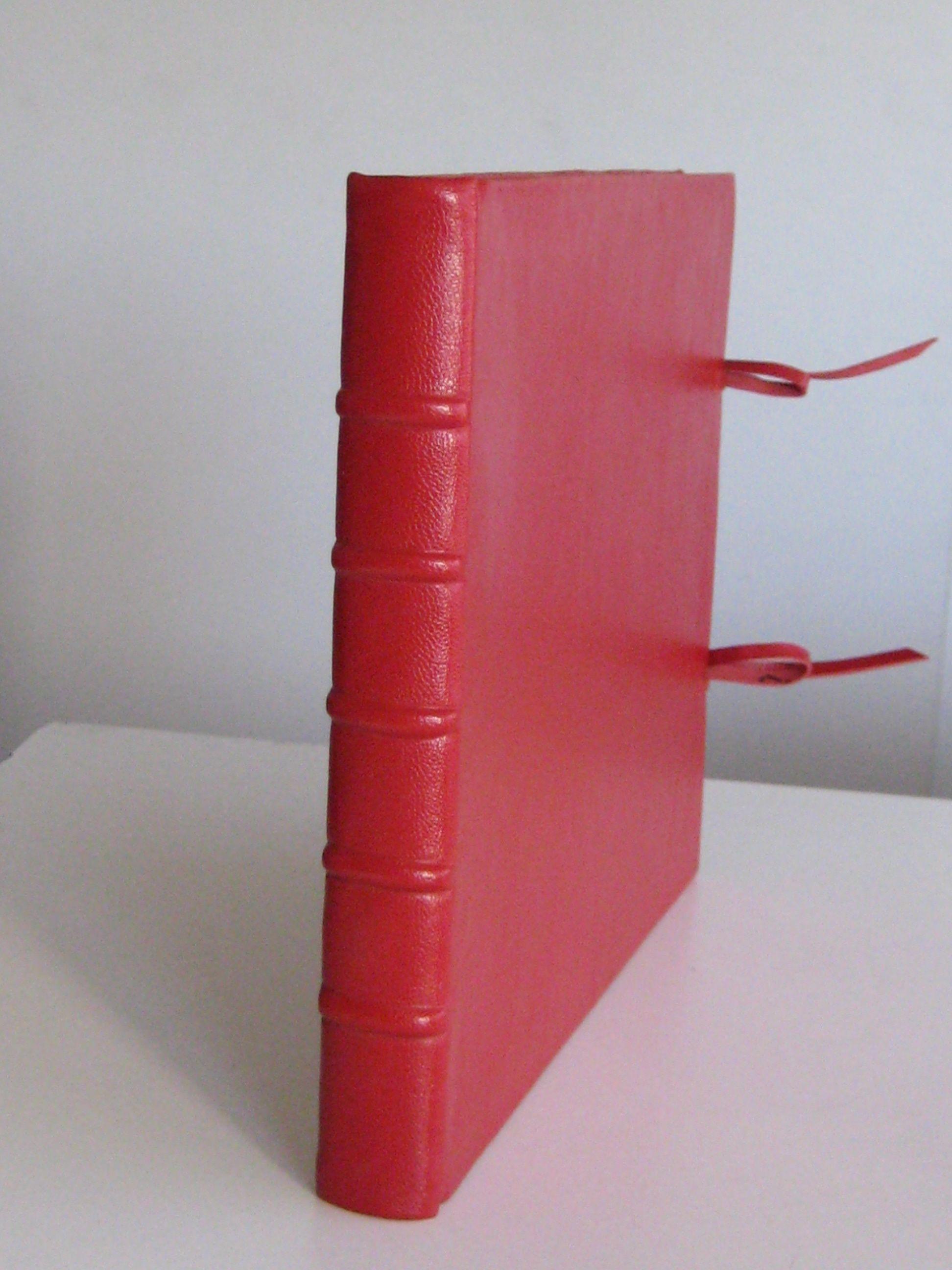 Libro en blanco, en cuero con nervios y amarras