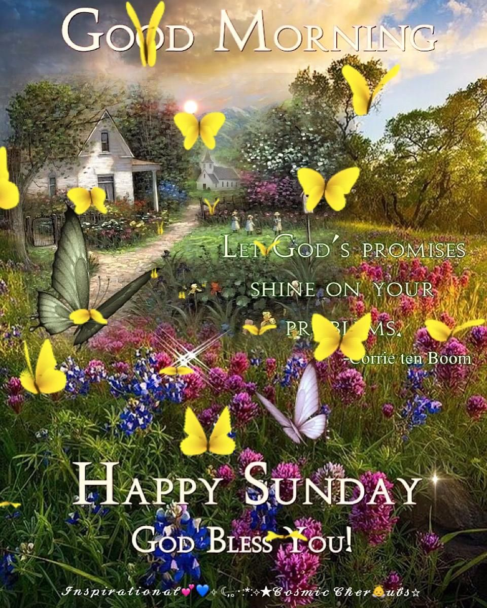 God's Promise Will Shine On Your Problems .. [Video]   Good morning happy  saturday, Good morning happy sunday, Good morning sunday images
