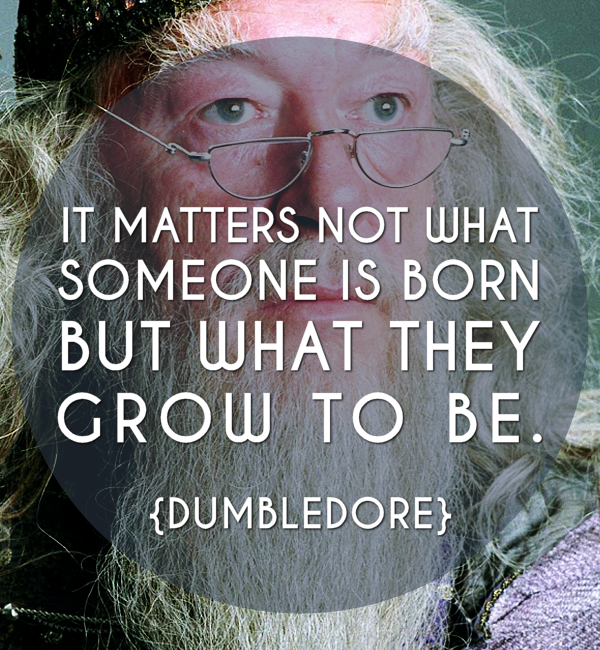 Harry Potter Inspirational Quotes: 10 Inspiring Harry Potter Quotes For A Magical New Year