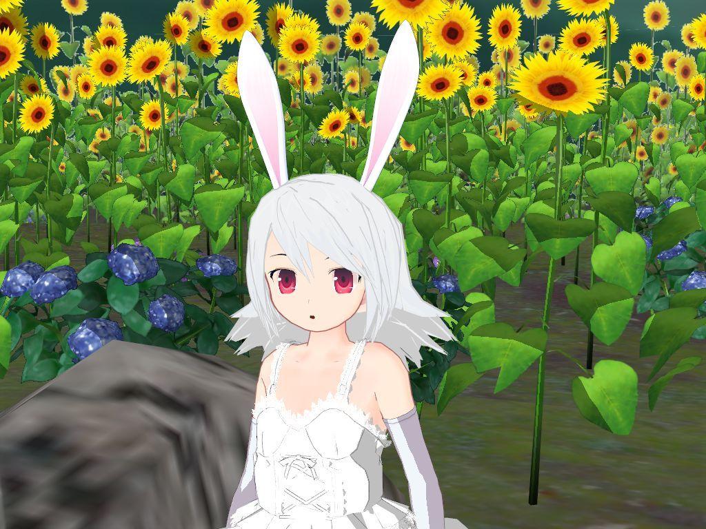 Image by deadforum on 3D Anime, Cute drawings, Cat girl
