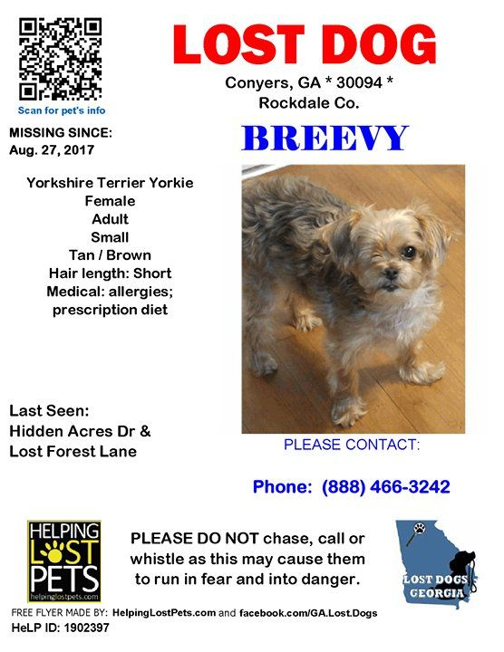 Pin By Lost Dogs Georgia On Dogs Lost In Georgia Losing A Dog
