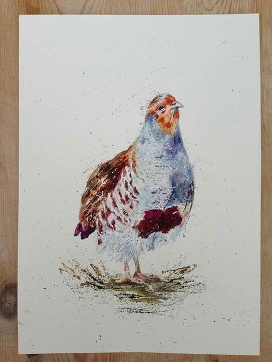 Best Nicola Jane Rowles Art Grey Partridge Art Painting 400 x 300