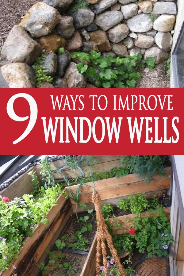 Photo of 9 Möglichkeiten, Ihre Fensterbrunnen zu verbessern – Garden Lovin