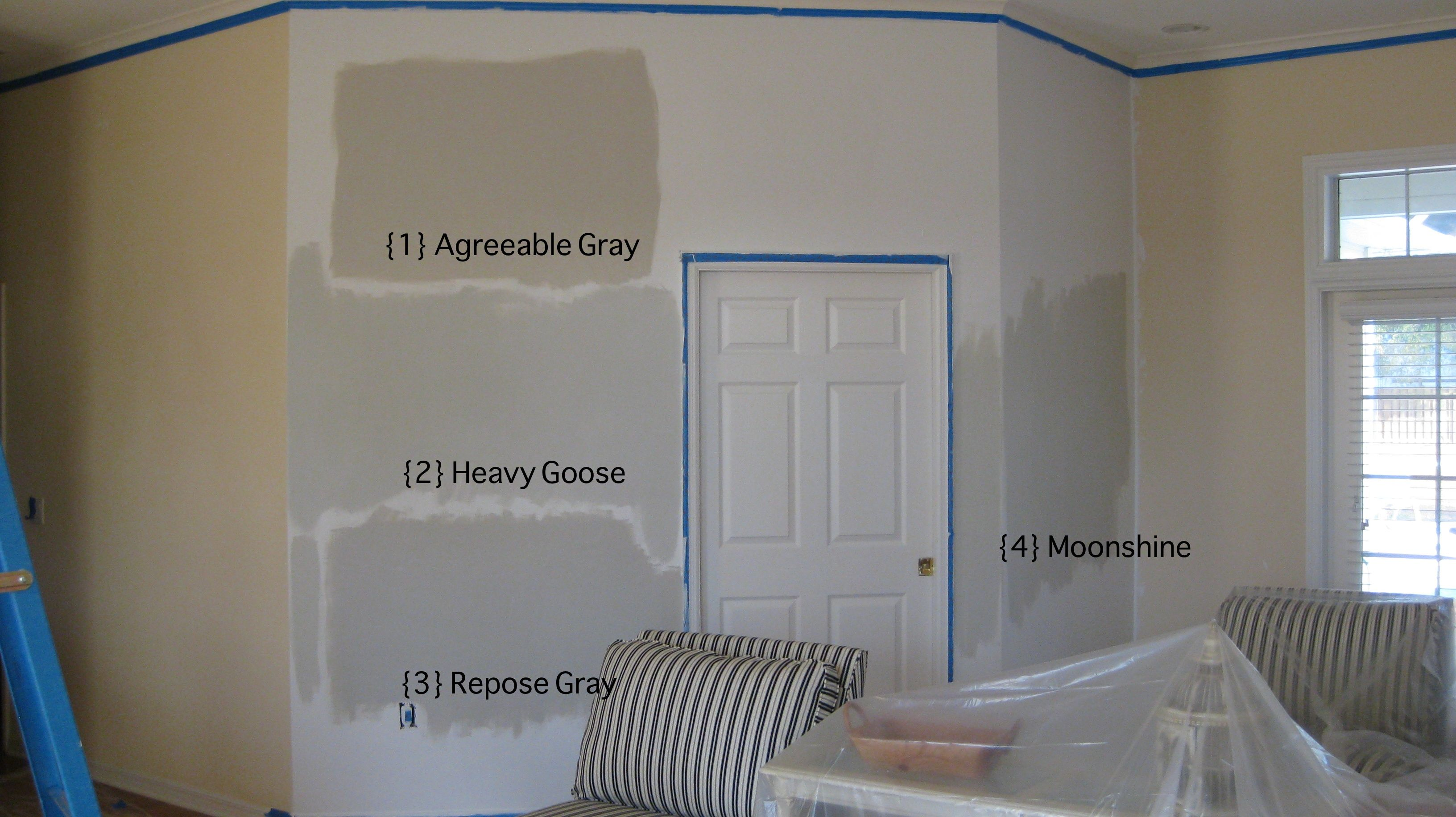 Image Detail For Agreeable Gray Sherwin Williams