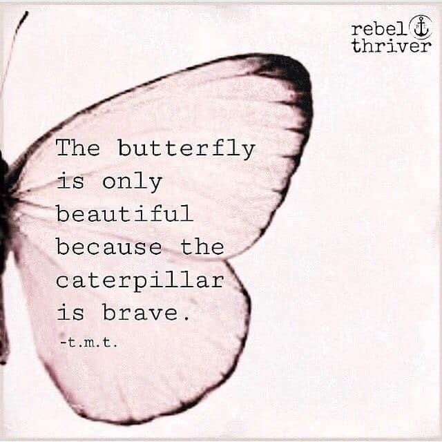 The Butterfly...