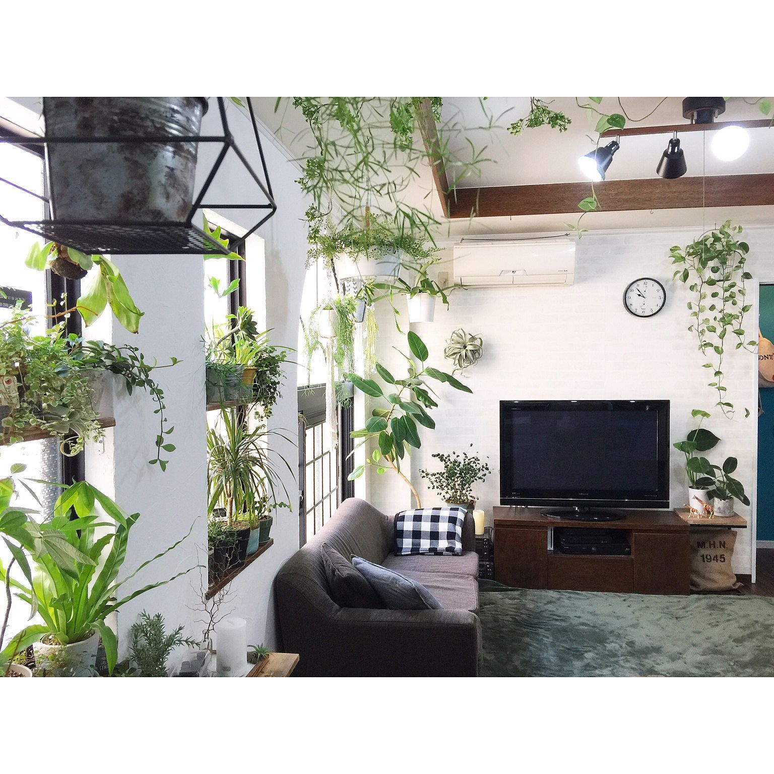 26 Relaxing Green Living Room Ideas: Overview/植物/中古住宅/いなざうるす屋さん/NO GREEN NO LIFE/漆喰DIY...などの